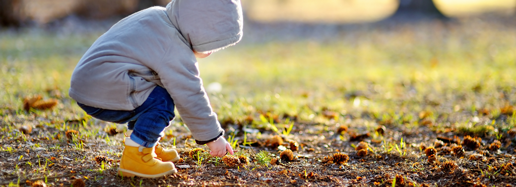 Child picking up a pinecone